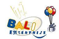 Sali Enterprises
